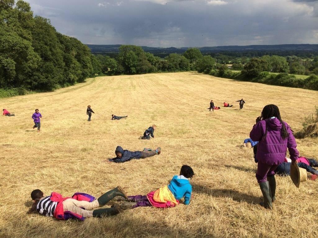 Straw field rolling at Wick 2014 v2