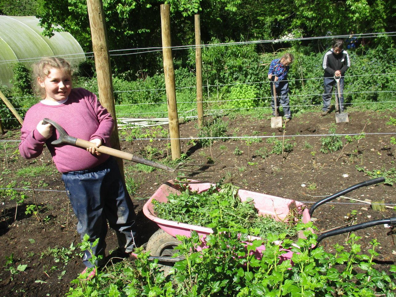 Girl gardening with spade and wheelbarrow