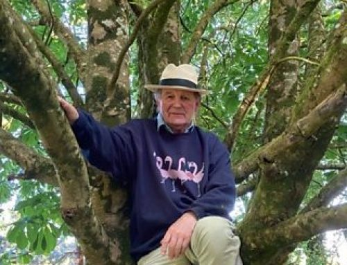 Michael talks on BBC Radio 4 about his love of trees