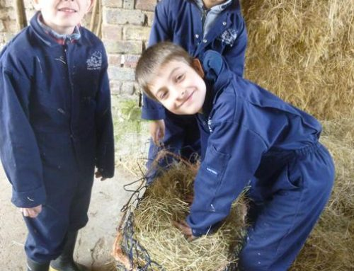 CEO Vanessa Fox discusses how fantastic it is to welcome children back to the farms.